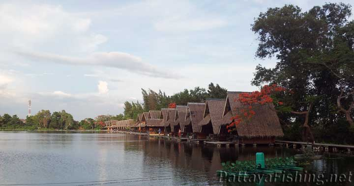 Bungsamran - PattayaFishing.net